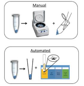 manual_vs_automated